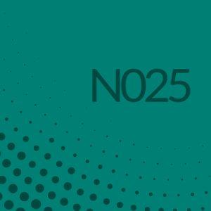 Nota 025 de Ricardo Rodulfo